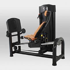 Leg Press 180º